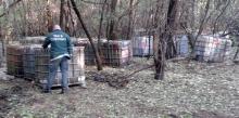 olajos hordók a bugaci erdőben
