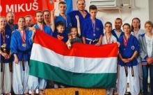 magyar nanbudokák