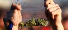 marihuána