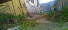 kecskeméti volt BM óvoda udvara