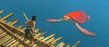 vörös teknős