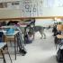 bombát keres a kutya egy kiskunfélegyházi iskolában