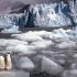 pingvinek az Antarktiszon
