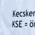 KSE Kft. elleni tüntetés