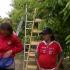 razzia egy Kecskemét környéki gyümölcsösben