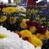 virágok a piacon