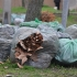 komposztáható hulladékzsákok Kecskeméten