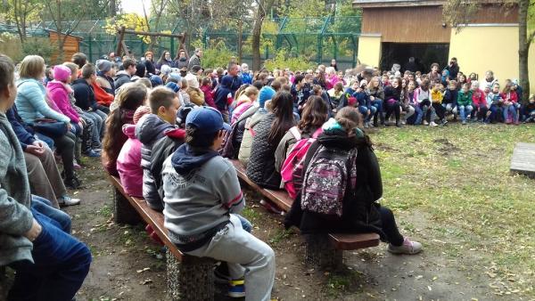 iskolások a kecskeméti vadaskertben